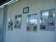 Galeria Bieg Baborowa
